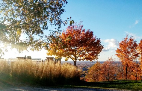automne-au-mont-arthabaska-2